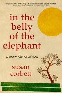 belly-of-elephant-COVER